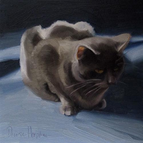 """Coco Blue 6x6 oil painting gray cat"" original fine art by Diane Hoeptner"