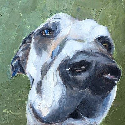 """Great Dane"" original fine art by Gigi ."
