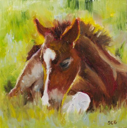 """Spring Foal"" original fine art by Sue Churchgrant"