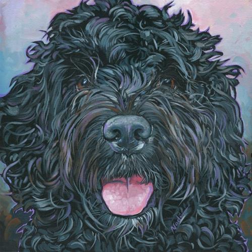 """Portuguese Water Dog"" original fine art by Nadi Spencer"