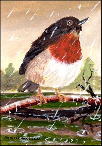 """Robin in the Rain"" original fine art by Patricia Ann Rizzo"