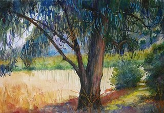 """Watercolor: Eucalyptus Canopy"" original fine art by Belinda Del Pesco"