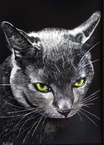 """Midnight"" original fine art by Susan Hoffheimer"