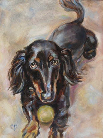 """Bailey"" original fine art by Carol DeMumbrum"