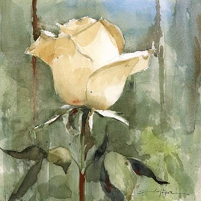 """""""Flores 47"""" original fine art by Emilio López"""