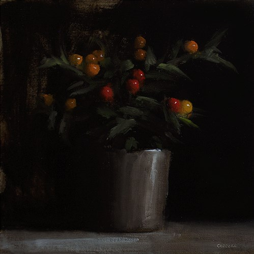 """Winter Cherry Plant"" original fine art by Neil Carroll"