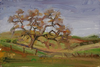 """Old Oak"" original fine art by Raymond Logan"