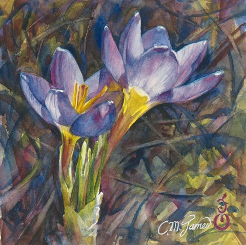"""Crocus Couple"" original fine art by Catherine M. James"
