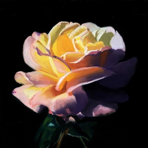 """Dramatic Rose pastel painting"" original fine art by Ria Hills"