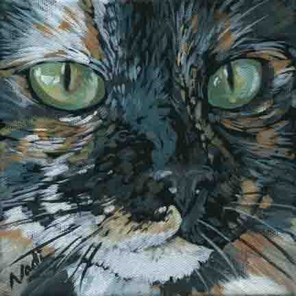 """Cat Eyes 10"" original fine art by Nadi Spencer"
