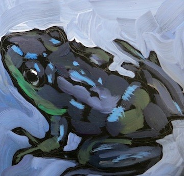 """Slick Wet Frog"" original fine art by Kat Corrigan"