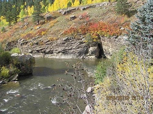"""Creek and Aspens"" original fine art by Barbara Haviland"