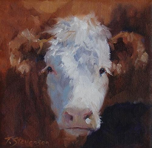 """Red and White Calf"" original fine art by Trish Stevenson"