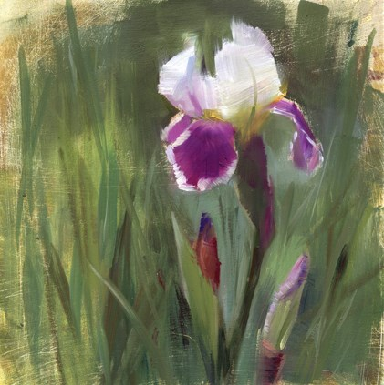"""The Iris are blooming"" original fine art by Kathy Weber"