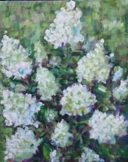 """Hydrangea3"" original fine art by Maggie Flatley"