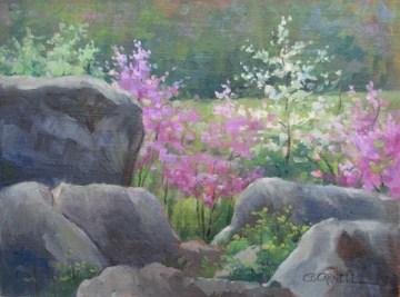 """REDBUDS BY DEVIL'S DEN - REPOST Gettysburg National Battlefield An Original Plein Air Oil Painting b"" original fine art by Claire Beadon Carnell"