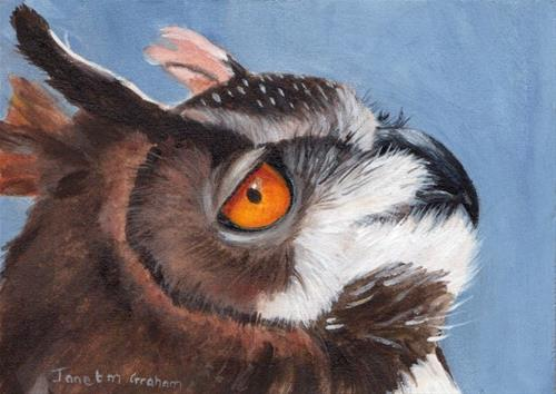 """European Eagle Owl ACEO"" original fine art by Janet Graham"
