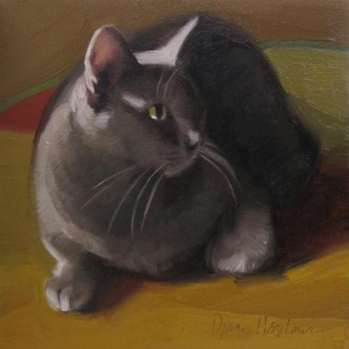 """Monday Cat oil painting of gray cat"" original fine art by Diane Hoeptner"