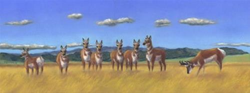 """What was That?"" original fine art by Carol Zirkle"