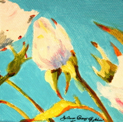 """White buds"" original fine art by JoAnne Perez Robinson"