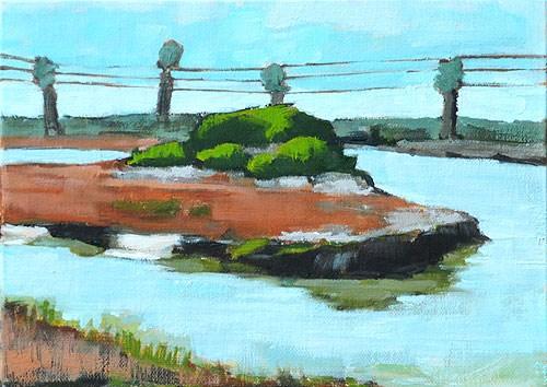 """Sunshine at the San Elijo Lagoon"" original fine art by Kevin Inman"