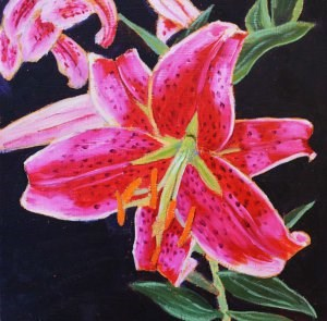 """Tiger Lily"" original fine art by Robert Frankis"