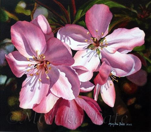"""Spring Blossoms"" original fine art by Monika Pate"