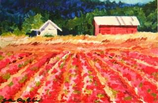 """Pink Crops"" original fine art by JoAnne Perez Robinson"