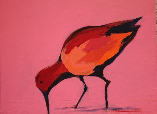 """Sea Bird, Contemporary Animal Paintings by Arizona Artist Amy Whitehouse"" original fine art by Amy Whitehouse"