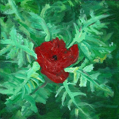 """Poppy"" original fine art by Betsy Cook"