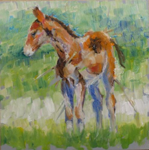"""Colt on Grey"" original fine art by Sue Churchgrant"