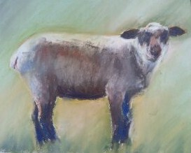 """spring lamb- Richland"" original fine art by Mary Davies Kerns"