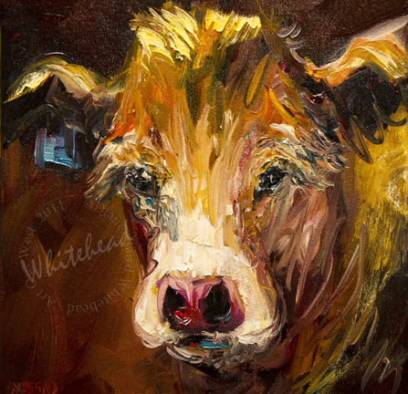 """COW CATTLE ANIMAL ART OIL PAINTING PINK NOSE D WHITEHEAD DAILY PAINTING"" original fine art by Diane Whitehead"