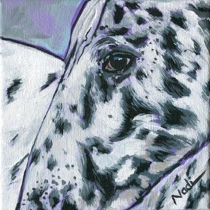 """Appaloosa"" original fine art by Nadi Spencer"