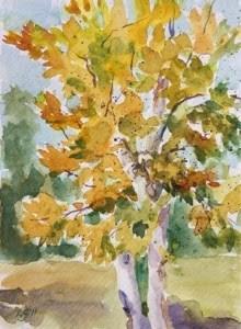 """""""Autumn Sycamore - Plein Air"""" original fine art by Lyn Gill"""