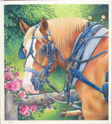 """Smell the Roses"" original fine art by Cheryl Plautz"