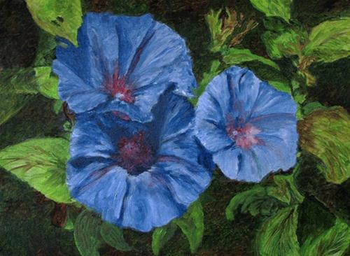 """Morning Glorys"" original fine art by Nan Johnson"