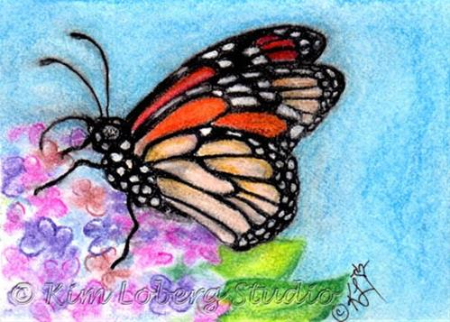"""Monarch on Lilacs"" original fine art by Kim Loberg"