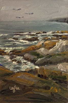 """Overcast at Montana de Oro"" original fine art by Raymond Logan"