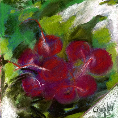 """Radish"" original fine art by Donna Crosby"