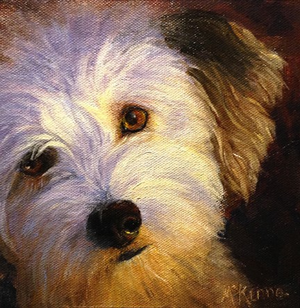 """""""Aussiedoodle"""" original fine art by Judith McKenna"""