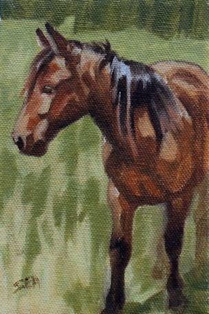"""Robbie"" original fine art by Susan Ashmore"