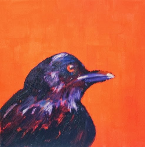 """Bird, Contemporary Animal Paintings by Arizona Artist Amy Whitehouse"" original fine art by Amy Whitehouse"
