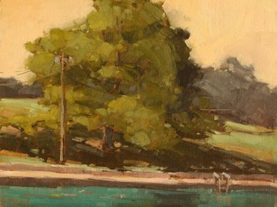 """Barton Springs Shadows"" original fine art by Laurel Daniel"