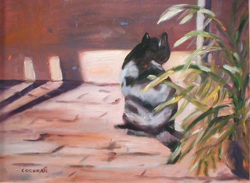 """""""Sydney Cat"""" original fine art by Carol Cochran"""