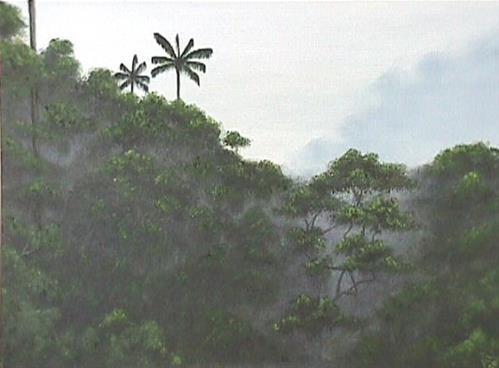 """""""Rainforest"""" original fine art by Amy VanGaasbeck"""