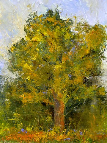 TreeStudy/St.Edwards Park original fine art by Blanche Niznik