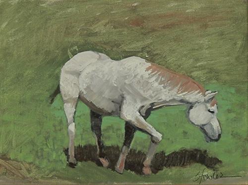 """Original Equine Oil Painting Grey Grazing by Colorado Artist Susan Fowler"" original fine art by Susan Fowler"