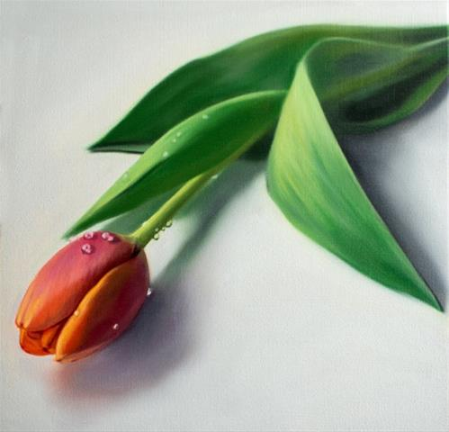 """Dew Drop Tulip"" original fine art by Lauren Pretorius"