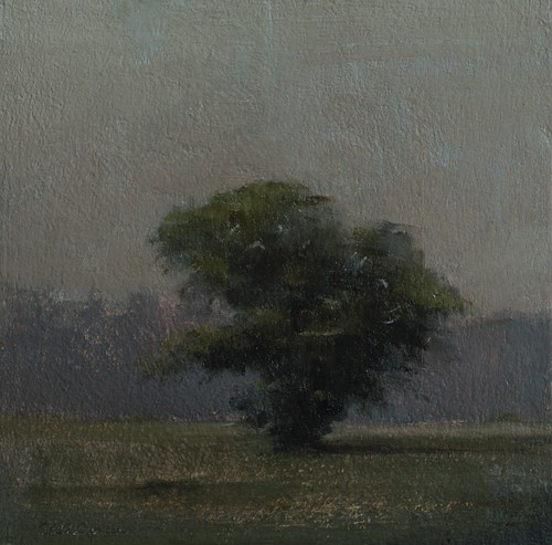 """""""Tree"""" original fine art by Neil Carroll"""